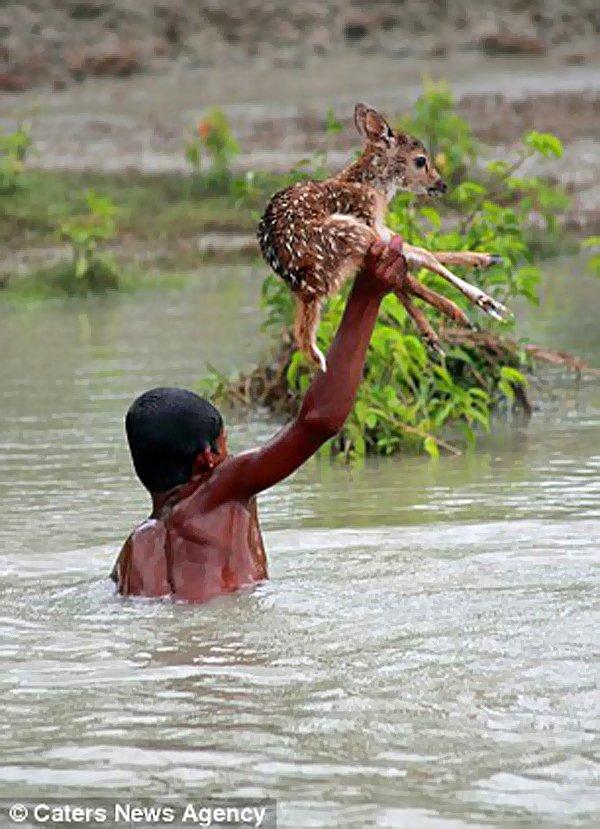 Nehrin karşısına geçmeye kararlıydı.