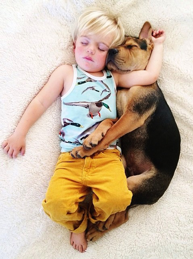 A-Naptime-Story-with-Dog-and-Baby-11