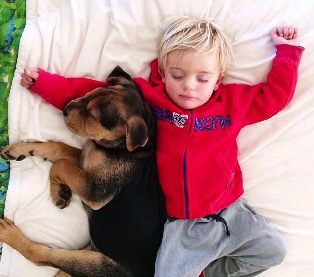 A-Naptime-Story-with-Dog-and-Baby-4