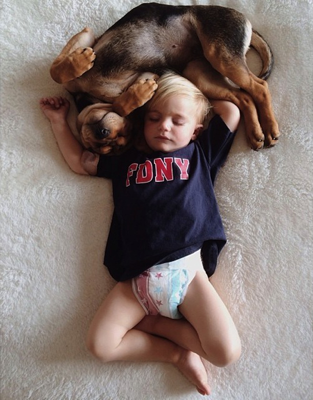 A-Naptime-Story-with-Dog-and-Baby-7