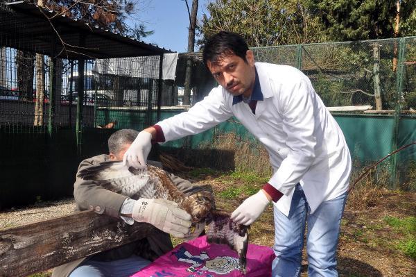 Çevre günü Akın: Çevre için hayvanların da korunması şart