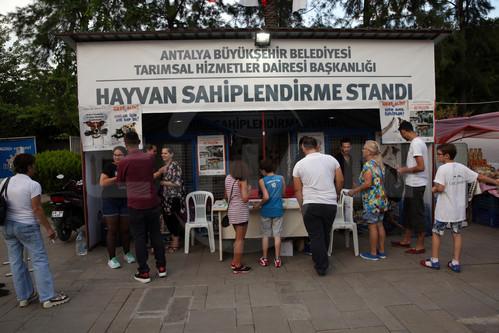 hyv shipl standı Ramazan Çarşısında Sokak Hayvanlarını Sahiplendiriyorlar