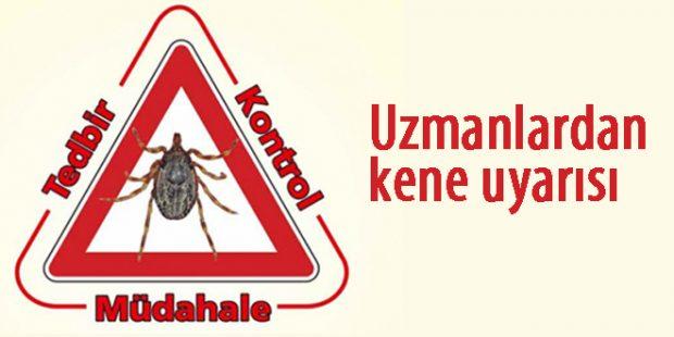 kenexxx 620x310 Kırım Kongo Kanamalı Ateşi (KKKA) hastalığına karşı dikkatli olun!