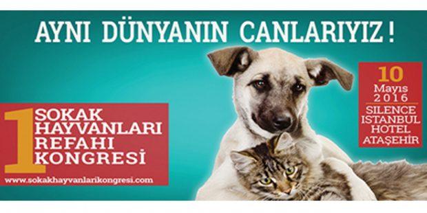 kongre reklamı 620x310 BASIN UTANMALIDIR!