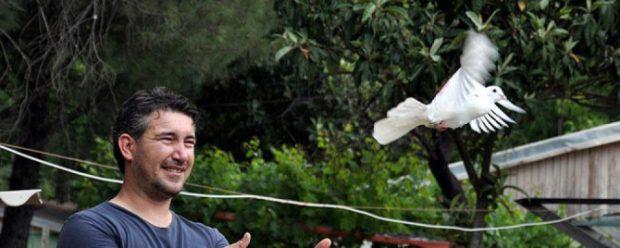 posta gvrcini 620x248 Eşiyle posta güverciniyle haberleşiyor
