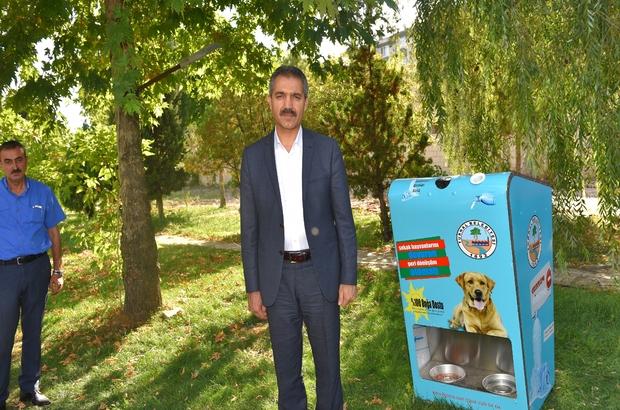 Tokat Tokatta Sokak Hayvanlarına Şefkat Eli Projesi