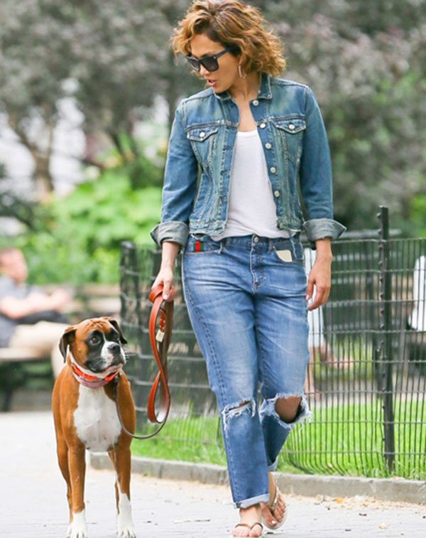 jrnefer lopez Jennifer Lopez köpeklerini limuzinle aldırdı