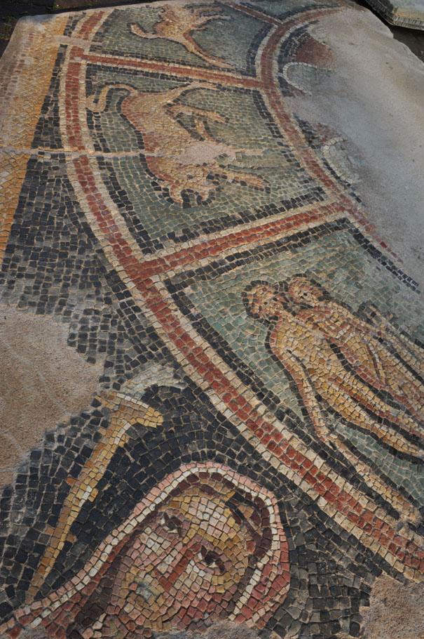 mozaik Hayvan ve Doğa Figürleriyle Kaplı Mitras Mozağiyi Bulundu