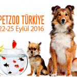 petzoo 2016