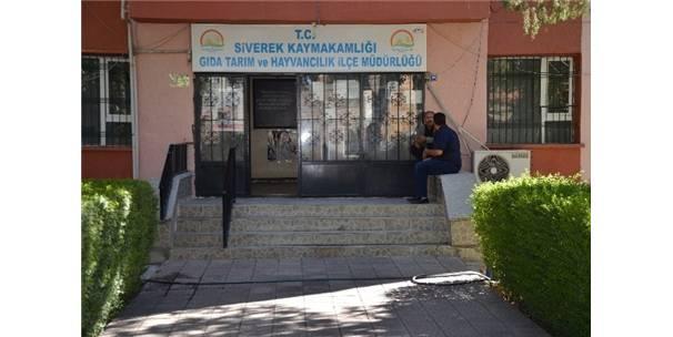 Siverekde Kuduz Şüphesi ile Bir Mahalle Karantinaya Alındı