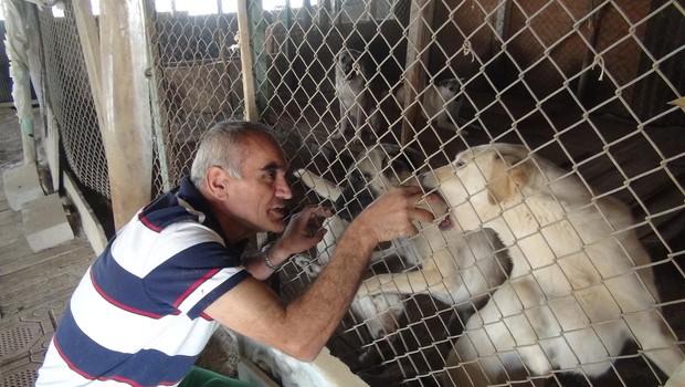 ESKİ 'Köpeğim barınakta kayboldu' iddiası