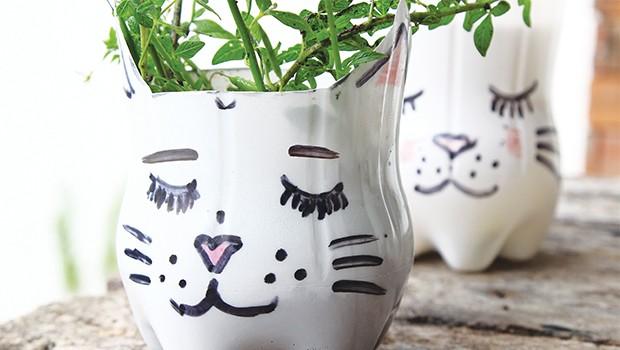 kedi övmecilik Yaşasın kedi övmecilik!