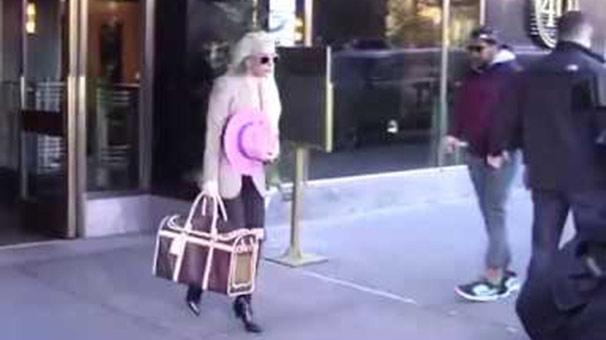 Köpeğine 8 bin liralık Lady çantası