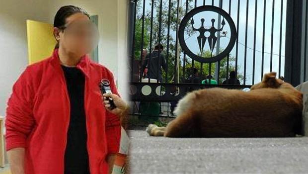 meslekten men Köpek bıçaklayan profesör ifadeye davet edildi