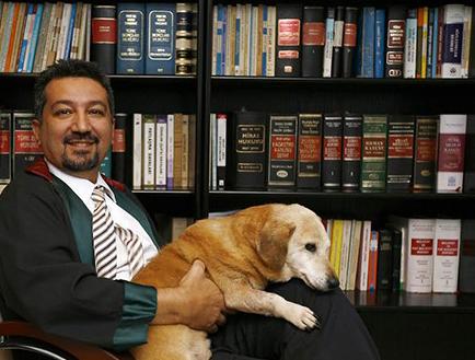 şenpolat1 Cumhurbaşkanı, 5199 sayılı Hayvanları Koruma Kanunu'nun değişmesinin gerçekleştiğini sanıyormuş