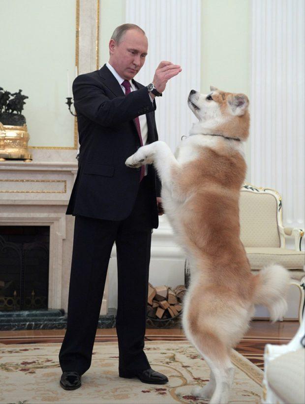 """Putin, Japonları """"Hayal"""" ile korkuttu!"""