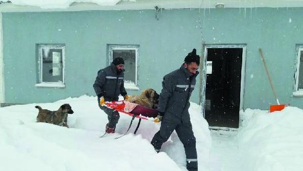 muş Sokakta yaşayan hayvanları soğuğa kurban etmeyeceğiz