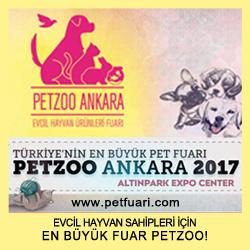 petzoo ankara banner