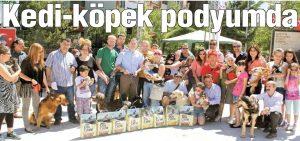 Çay yolu Festivali