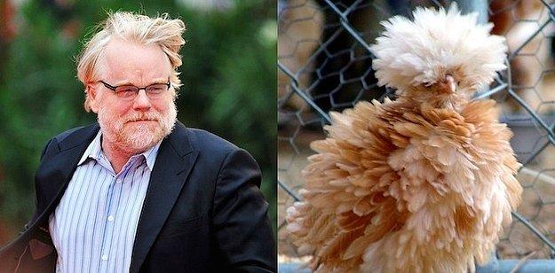 En İyi Yardımcı Erkek Oyuncu: Philip Seymour Hoffman = Kabarık Tavuk