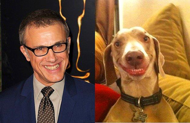 En İyi Yardımcı Erkek Oyuncu: Christopher Waltz = Köpek