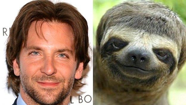 En İyi Erkek Oyuncu: Bradley Cooper = Tembel Hayvan