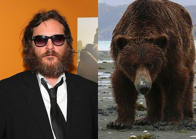 En İyi Erkek Oyuncu: Joaquin Phoenix = Ayı