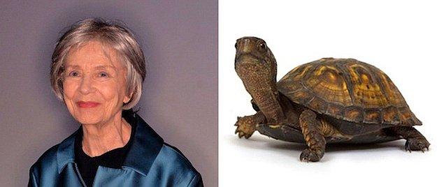 En İyi Kadın Oyuncu: Emmanuelle Riva = Kaplumbağa